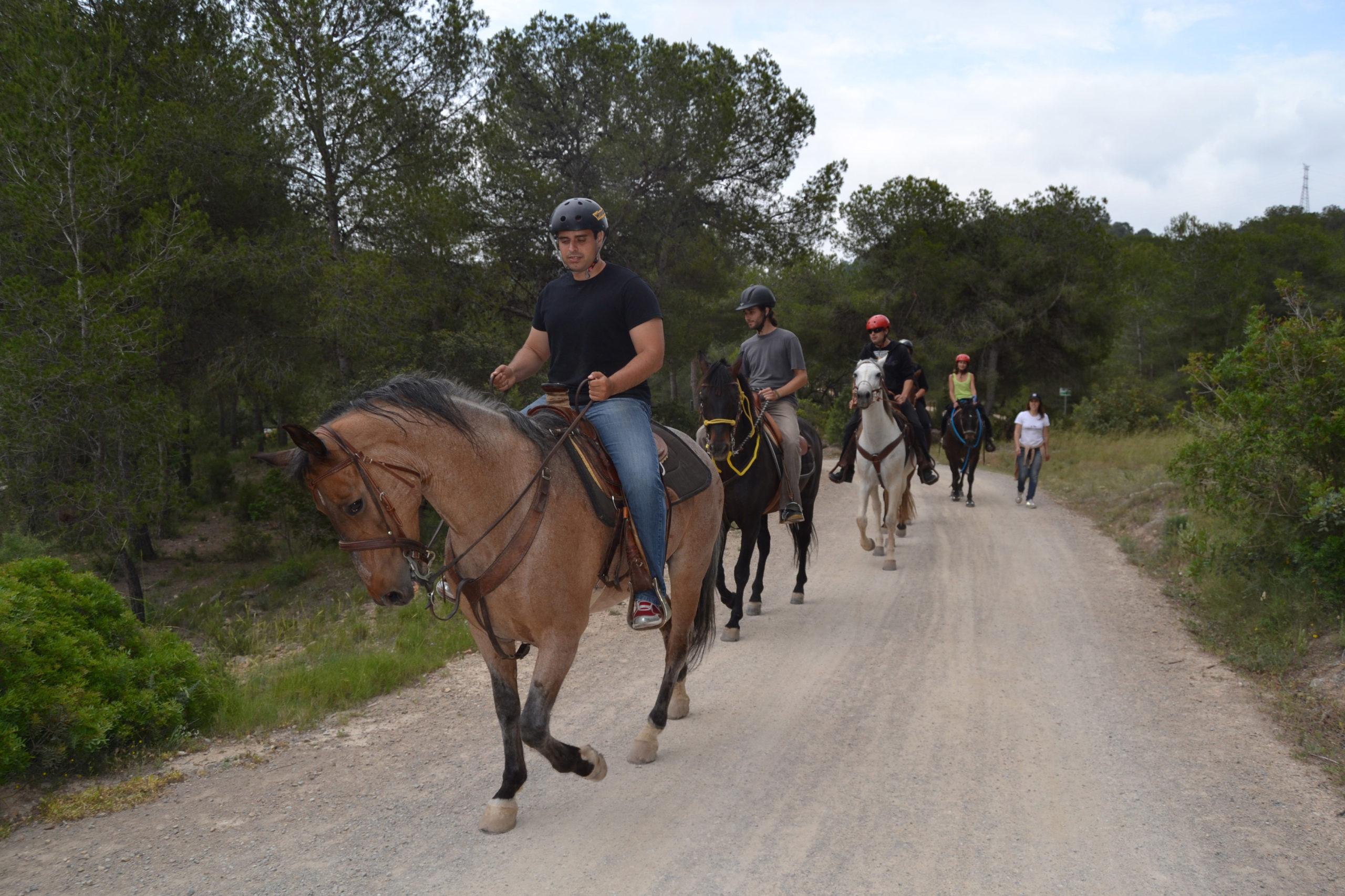 Paseo a caballo para despedidas