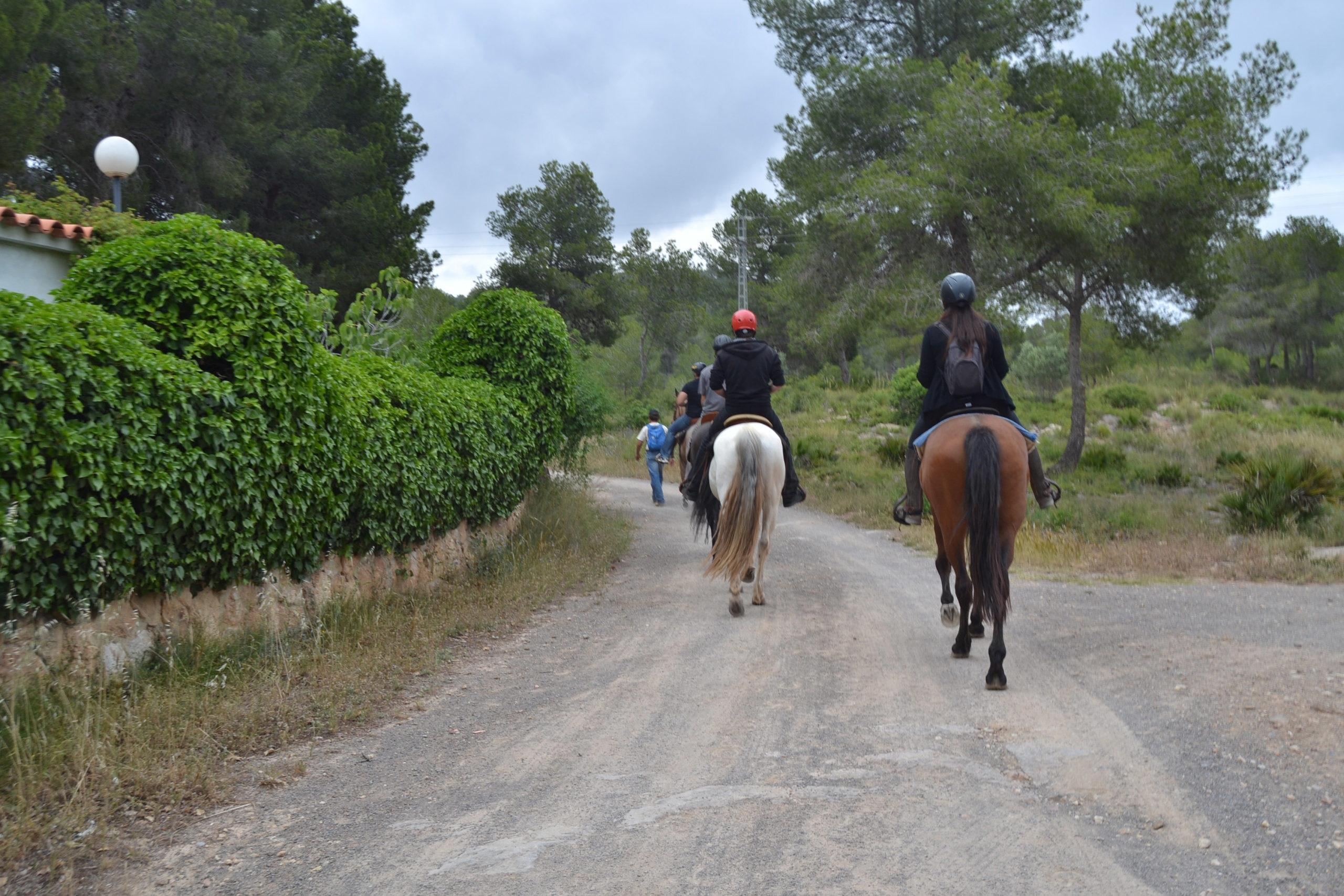 Paseo a caballo en Salamanca para despedidas