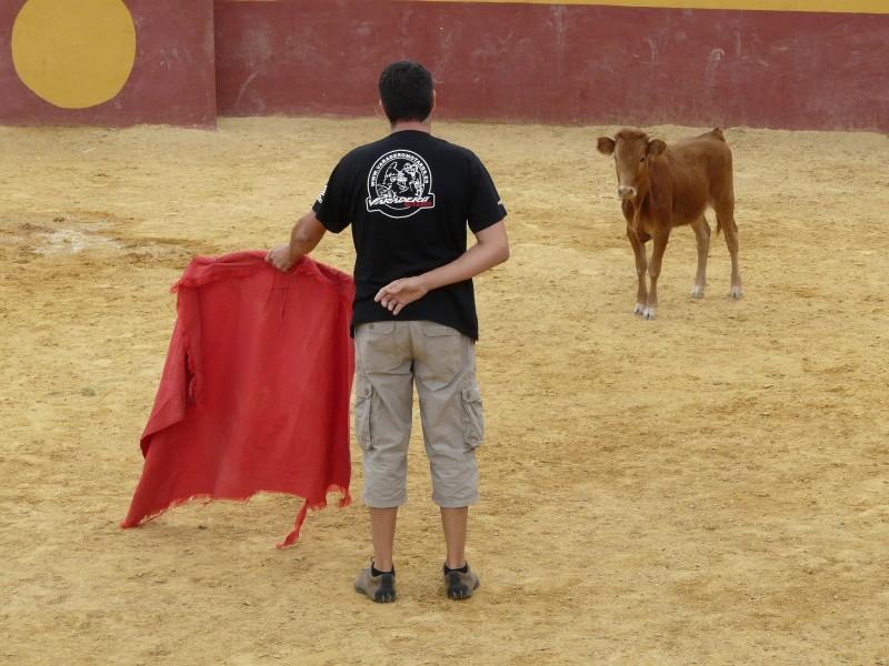 Capea para despedidas en Salamanca