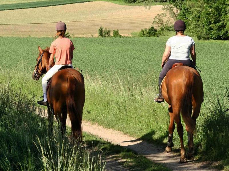 Paseo a caballo para despedidas en Salamanca